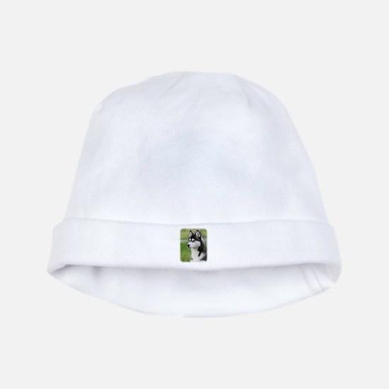 Siberian Husky 9Y570D-006 baby hat