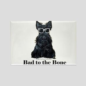 Scottie Bad to the Bone Rectangle Magnet