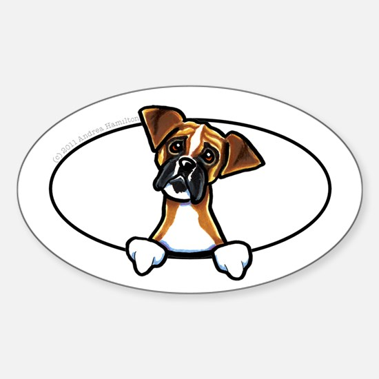 Natural Ears Boxer Peeking Bumper Decal
