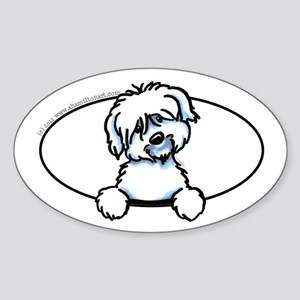 Coton de Tulear Peeking Bumper Sticker (Oval)