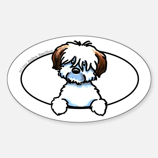 Tricolor Coton de Tulear Peeking Bumper Decal