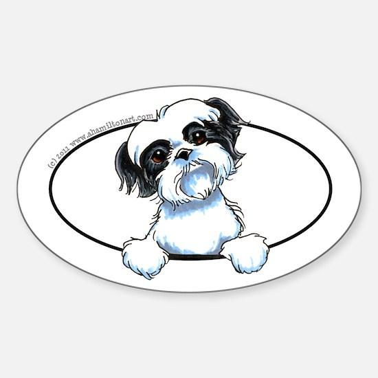 Black White Shih Tzu Peeking Bumper Sticker (Oval)