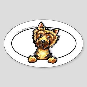 Norwich Terrier Peeking Bumper Sticker (Oval)