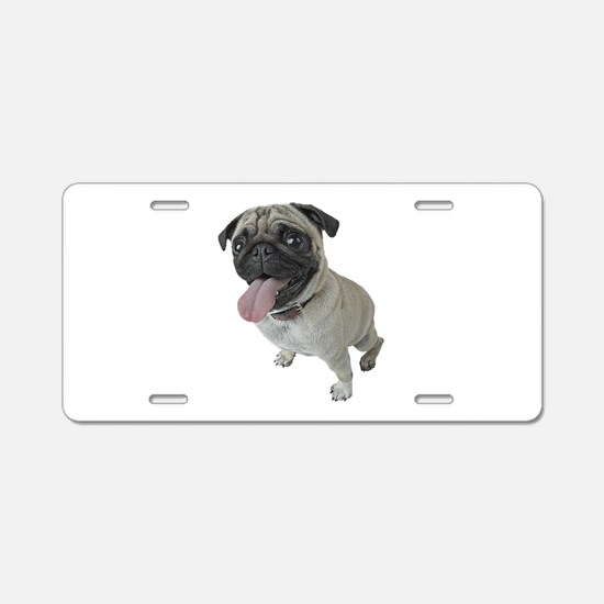 Pug Close-Up Aluminum License Plate