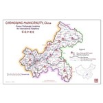 Chongqing Orphanage Map Large Poster (v1.4) 23x35