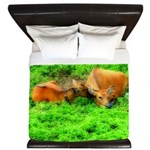 Nuzzling Cows King Duvet