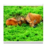 Nuzzling Cows Tile Coaster