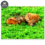 Nuzzling Cows Puzzle