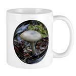 Brown Mushroom/fungi photo Mug