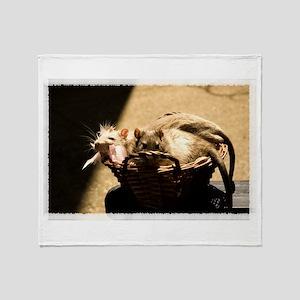 Sun and Shadow Rats Throw Blanket