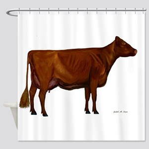Shorthorn dairy cow Shower Curtain