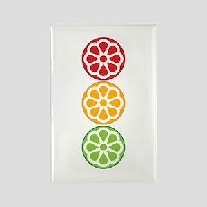 Citrus Traffic Light Rectangle Magnet