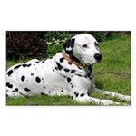 ...Dalmatian 02... Rectangle Sticker