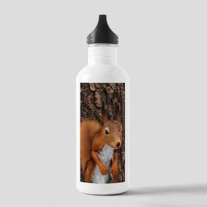 European Red Squirrel Water Bottle