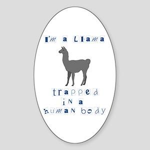 I'm a Llama Oval Sticker