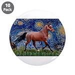 Starry Night Quarterhorse 3.5