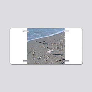 Seagull on the Beach Aluminum License Plate