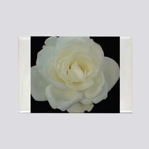 Midnight Rose Rectangle Magnet