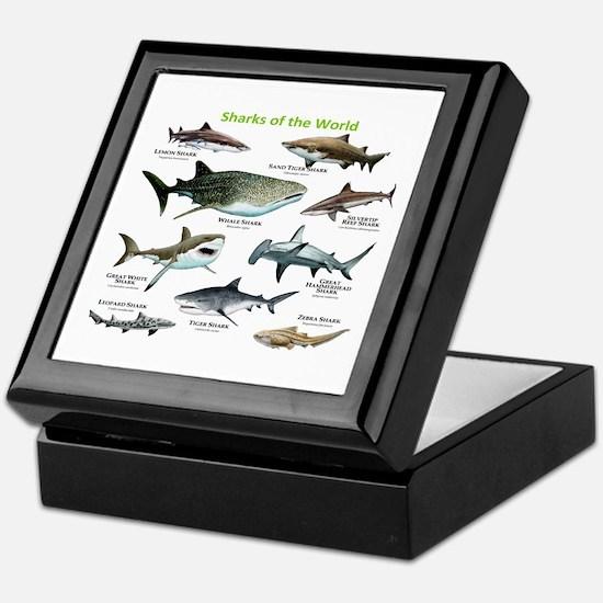 Sharks of the World Keepsake Box