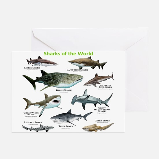 Sharks of the World Greeting Cards (Pk of 20)