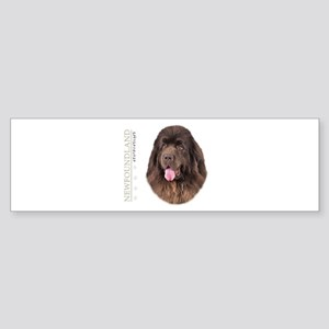 Brown Newfoundland Sticker (Bumper)