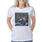 Killdeer Women's Classic T-Shirt