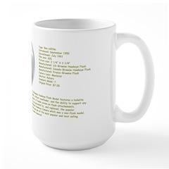 The Brownie Hawkeye Flash Model Large Mug
