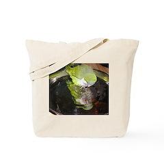 Quaker Tote Bag