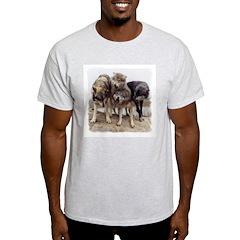 Rallying Wolves Ash Grey T-Shirt
