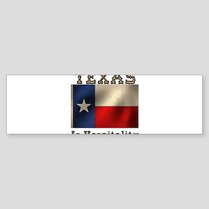 Texas Hospitality Sticker (Bumper)