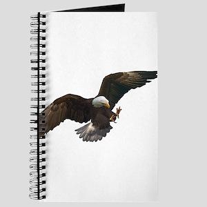Air Strike Journal