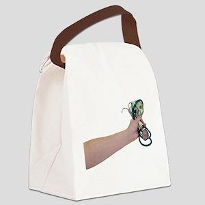 HealthcareCosts090409 copy Canvas Lunch Bag
