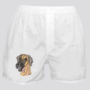 NF Sly Boxer Shorts