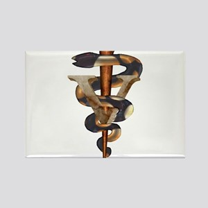 Veterinary Caduceus Rectangle Magnet