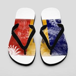 Moldova Flag Flip Flops