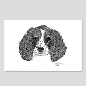 Spaniel Pup Pen & Ink Postcards (8 Pck)
