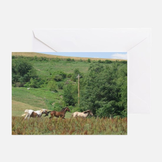 The Great Race Greeting Cards (Pk of 10)