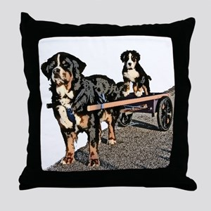 Back Seat Drafter Throw Pillow