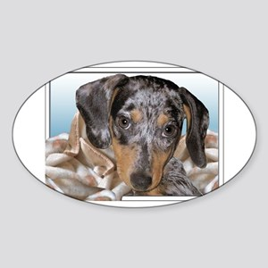 Speckled Dachshund Dogs Oval Sticker