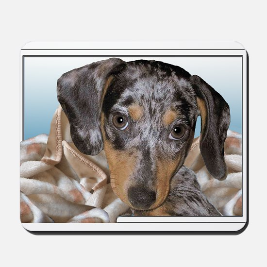 Speckled Dachshund Dogs Mousepad