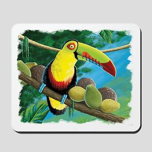 Rain Forest Toucan Mousepad
