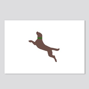 Dock Jumping Dog Postcards (Package of 8)