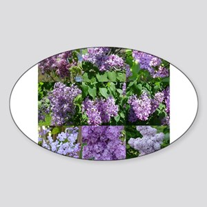 Lilac Collage #16 Oval Sticker