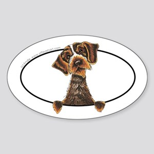 WIrehaired Pointing Griffon Peeking Bumper Sticker