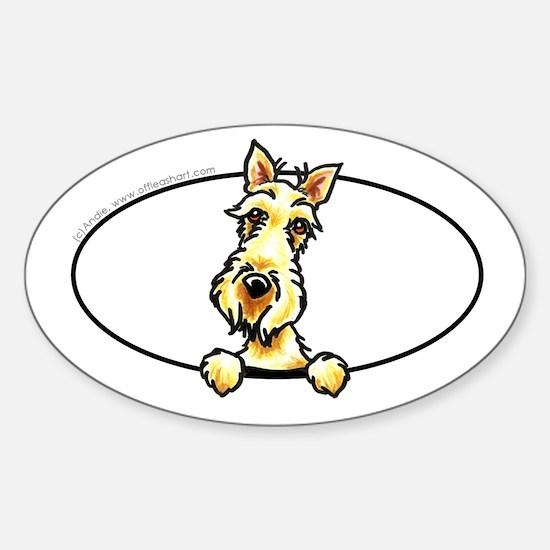 Wheaten Scottie Peeking Bumper Sticker (Oval)