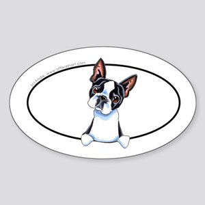 Boston Terrier Peeking Bumper Sticker (Oval)
