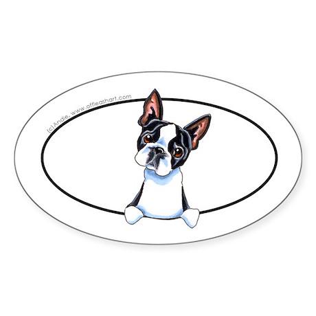 Boston Terrier Peeking Bumper Sticker (Oval)