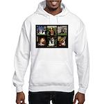 Cavalier Famous Art Comp1 Hooded Sweatshirt