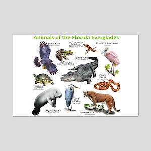 Animals of the Florida Everglades Mini Poster Prin