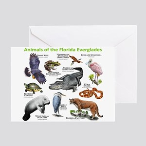 Animals of the Florida Everglades Greeting Card